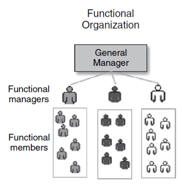 Function based Organizational structures